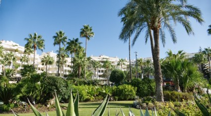 5 Places to Find Luxury Property in Marbella